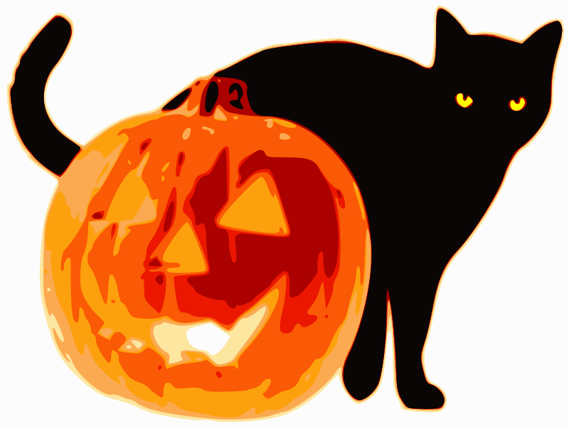 Black+cats+drew+the+short+straw+during+Halloween+season