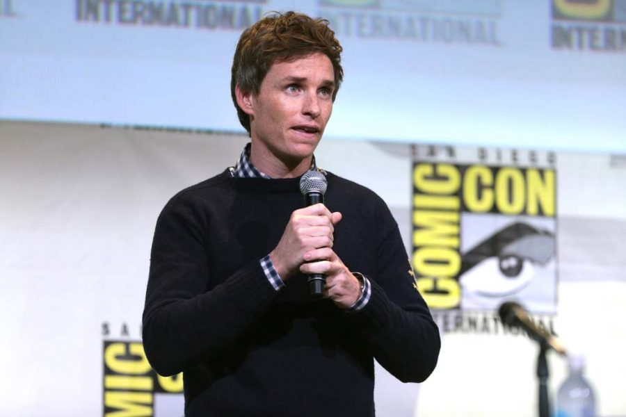 Eddie+Redmayne+talks+about+%22Fantastic+Beasts+and+Where+to+Find+Them%22+and+Comic+Con