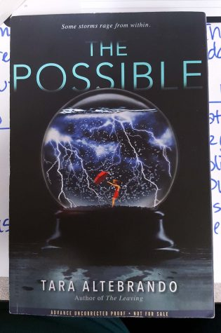 "Book Den Reviews: ""The Possible"""