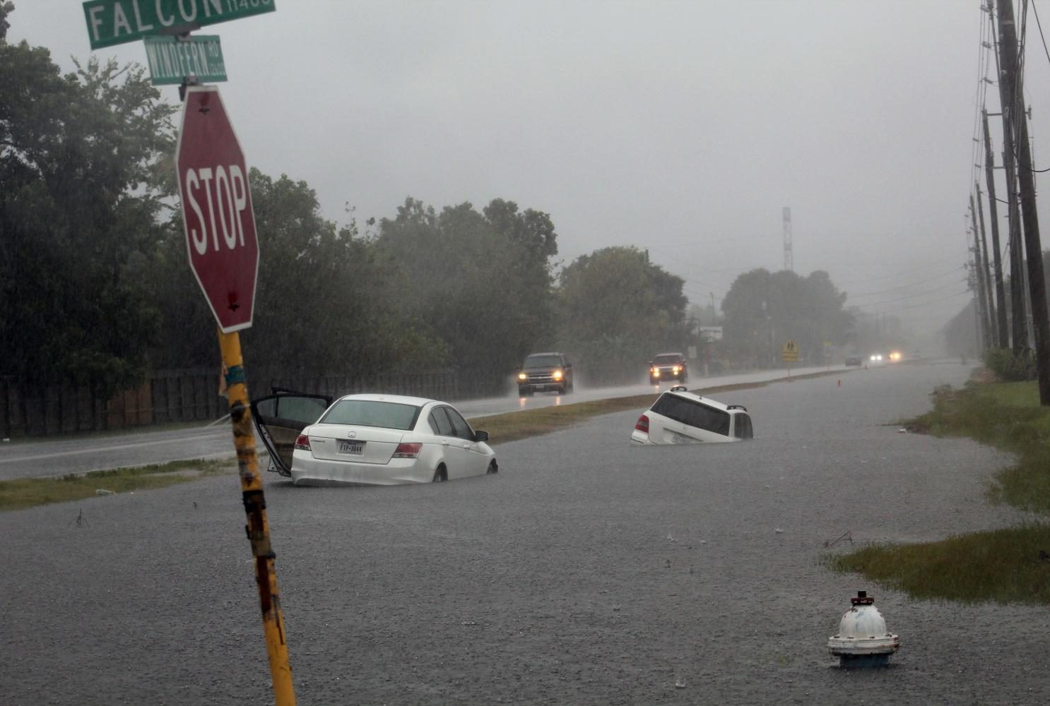 Water rises above abandoned cars on the road.