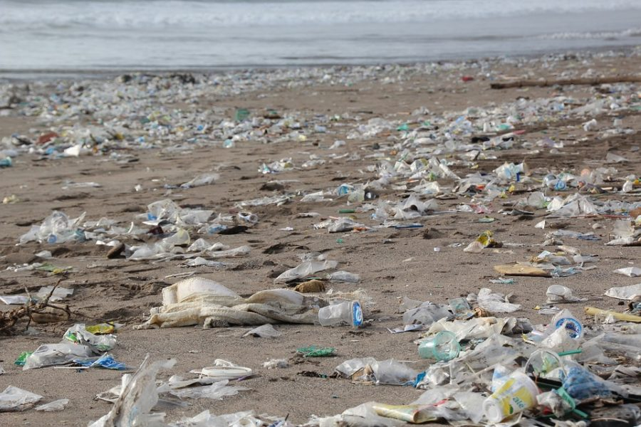 The Biodegradable Debacle: The Problem with Plastic