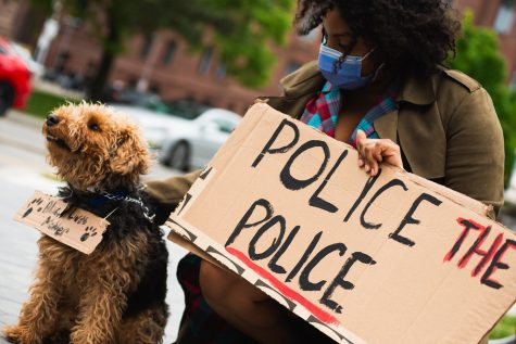 """Police The Police Sign - Dog wearing cardboard Black Lives Matter Protest Sign - Justice For Regis - Not Another Black Life rally and March - May 30, 2020 - Creative Commons Photos Here Later Today - Toronto Christie Pitts Park down Bloor Street to Queens"" by Jason Hargrove is licensed under CC BY 2.0"